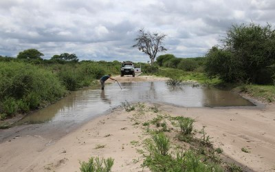 Botswana:  Kalahari « car wash », ne me paNlez plus de Pan