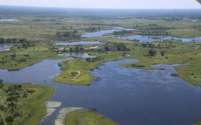 27: Maun, le Delta Okavango et «Hello, tango ggroadtrip, hello, tango ggroadtrip, répondez nous vous cherchons»!