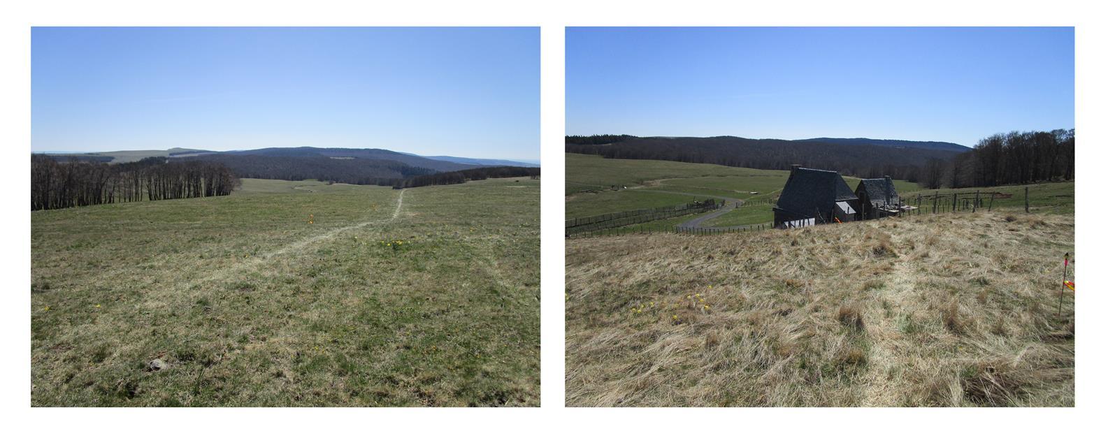 paysage 2